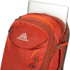 Gregory Diode 34 Backpack Herren ferrous orange